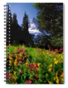 Mount Assiniboine Spiral Notebook
