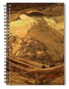 Mountain Buds Spiral Notebook