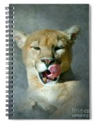 Mountain Lion Spiral Notebook