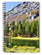 Mountain Pond Spiral Notebook