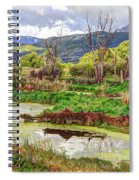 Mountain Valley Marsh - Hdr Spiral Notebook