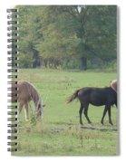 Mowing The Lawn Spiral Notebook