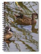 Mr And Mrs Blue Wing Teal Spiral Notebook