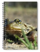 Mr. Charming Eyes Spiral Notebook