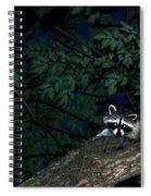 Mr. Raccon Spiral Notebook