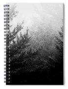 Mt Desert Fog Spiral Notebook