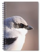 Mug Shot Of The Bandit Spiral Notebook