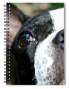 Mug Shot Spiral Notebook