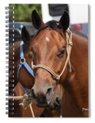 Mule Days Benson Spiral Notebook