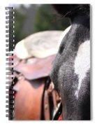 Mule Days Photo Spiral Notebook
