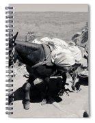 Mule Train Bw Spiral Notebook