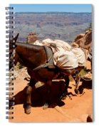 Mule Train Spiral Notebook