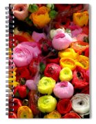 Multicolor Spiral Notebook