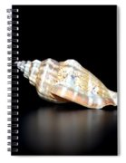 Multicolor Reflections Spiral Notebook