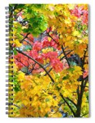 Multicolored Maple Spiral Notebook