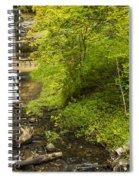 Munising Falls 3 Spiral Notebook