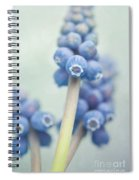 Muscari Spiral Notebook