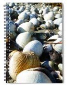 Muscle Beach Spiral Notebook