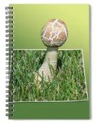 Mushroom 02 Spiral Notebook
