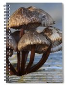 Mushroom Cluster Spiral Notebook