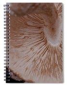 Mushroom Gills Spiral Notebook