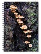 Mushroom Parade Spiral Notebook