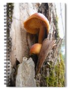 Mushrooms On A Tree Spiral Notebook