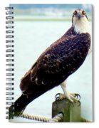 My Feathered Friend Spiral Notebook