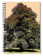 My Friend The Tree Spiral Notebook