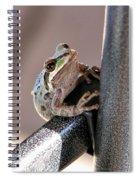 My New Friend Spiral Notebook