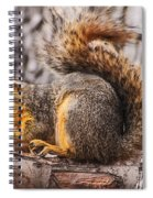 My Nut Spiral Notebook