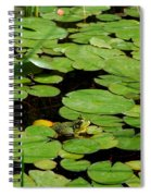 My Pad Or Yours Spiral Notebook