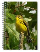 My Pretty Yellow Belly Spiral Notebook