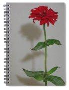 My Shadow Spiral Notebook