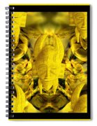 Mystic Illusions Spiral Notebook