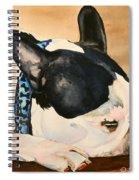 Nap Spiral Notebook