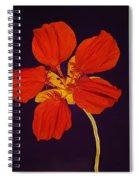 Nasturtium Spiral Notebook