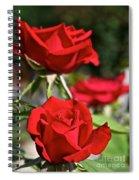 National Trust Rose Spiral Notebook