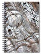 Natural Abstract 11 Spiral Notebook