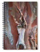 Natural Abstract 19 Spiral Notebook