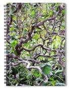 Natural Abstract 3 Spiral Notebook