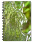 Natural Abstract 34 Spiral Notebook