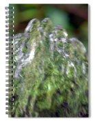 Natural Abstract 35 Spiral Notebook
