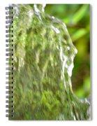 Natural Abstract 36 Spiral Notebook