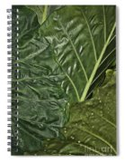 Natural Abstract 39 Spiral Notebook