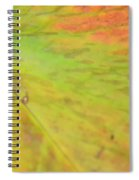 Natural Abstract 42 Spiral Notebook