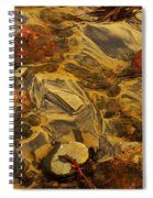Natural Abstract Spiral Notebook