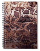 Natural Carvings Spiral Notebook