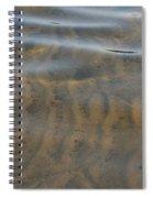 Natural Lines Spiral Notebook