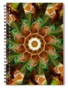 Natural Pinwheel Spiral Notebook